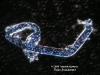 Dunkelfeld Mikroskop Aufnahme Naturheilpraxis Brandstetter Heilpraktiker